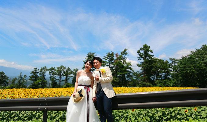 明野ひまわり畑 フォトジェニック ひまわり前撮りウェディングひまわりフォトウェディング ひまわり結婚写真