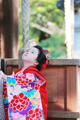 3歳七五三お詣り写真