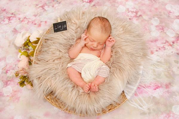 Newborn Fotografie- schlafendes Baby im Korb, Homeshooting Frick