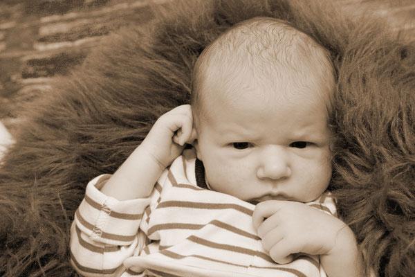 Babyfotograf, Baby im kuscheligen Körbli, Mumpf
