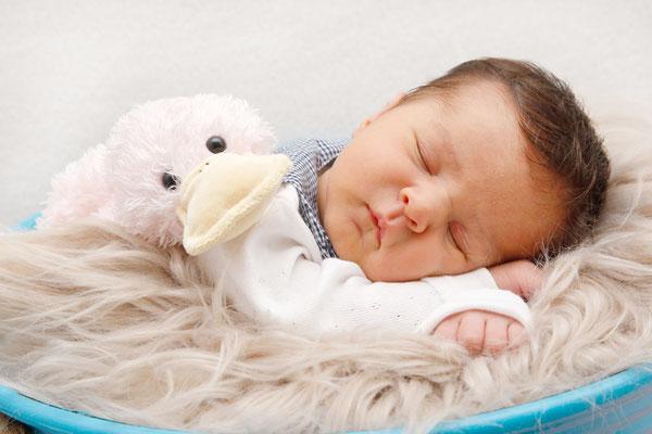 Baby Homeshooting, Baby schläft im Eimer, Boniswil