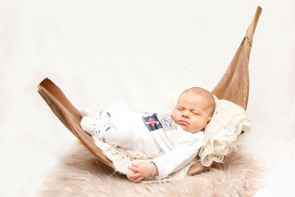 Newborn Fotografie, Baby liegt im Blatt, Teufenthal