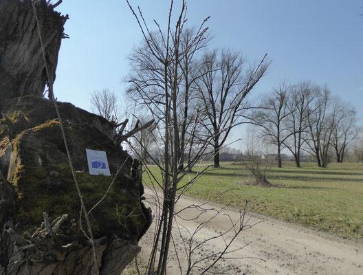 Markierung Donaupanoramaweg