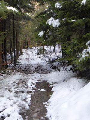 Abstieg nach Elisabethszell