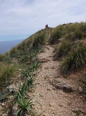 Der Bergrücken auf dem Puig des Telegraf