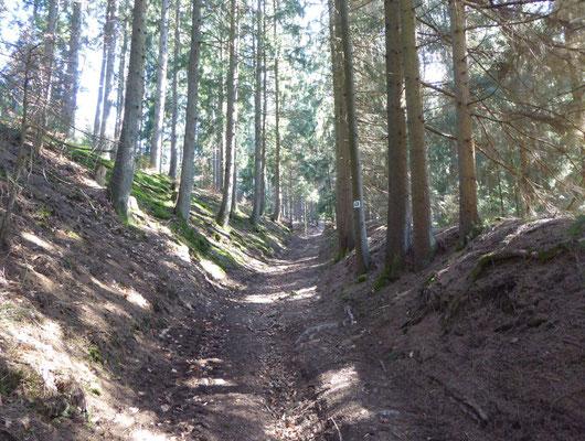 Aufstieg im Dexenholz