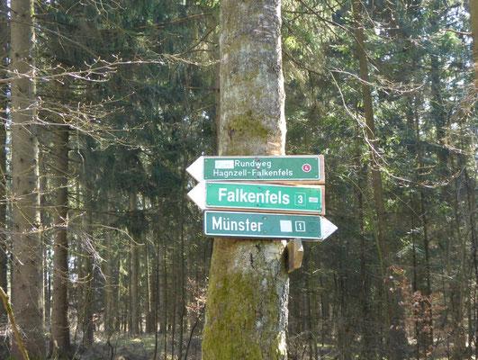 hier geht es nach links Richtung Falkenfels