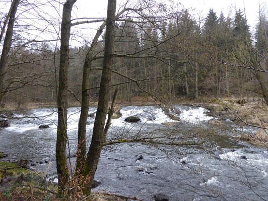Wasserfall an der Schwarzach