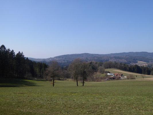 Blick zurück auf Saulburg