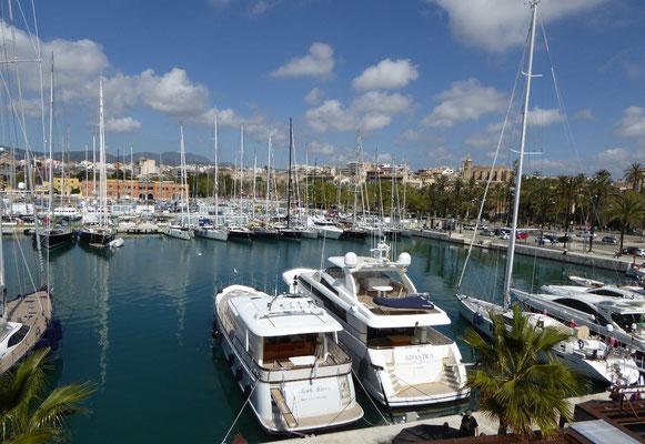 Yachthafen von Palma