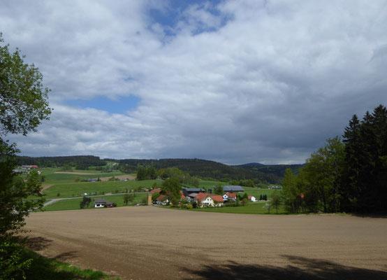 Blick auf Steinlohe