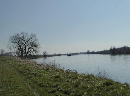 Donau...das nächste Schiff