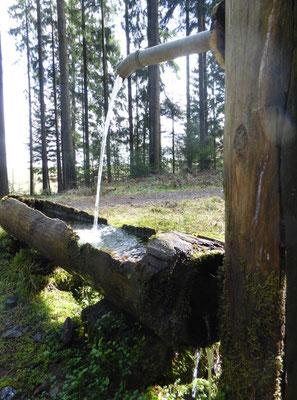 Brunnen mit Rastbank
