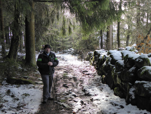 über einen schönen Waldweg geht es hinunter
