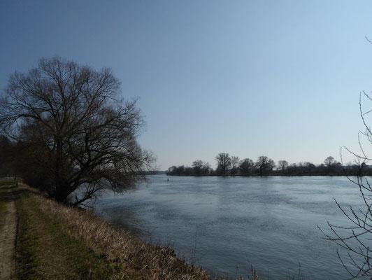 Donau kurz vor Pfelling