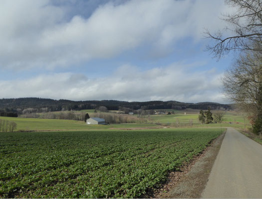 Blick zurück auf Kleinenzenried