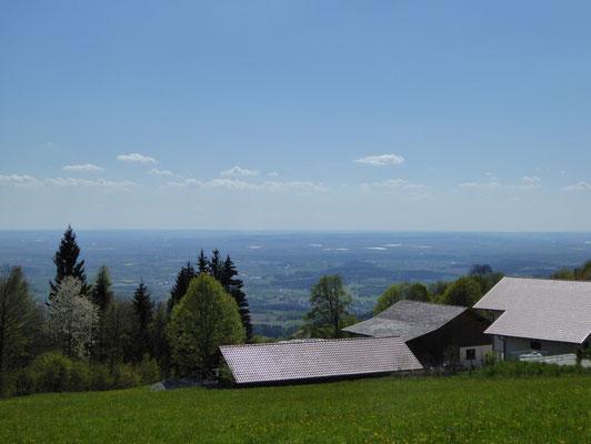Blick in den Gäuboden von Grandsberg aus...