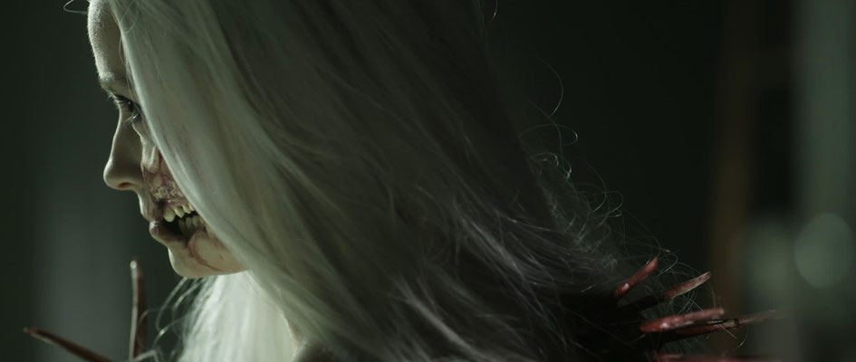Maske/Perücke/Bemalung & Haararbeiten: dab and stroke, Idee/Kulisse/Figurenbau/Kostüm: Josef Schmidt, Darstellerin: Lilly Menke