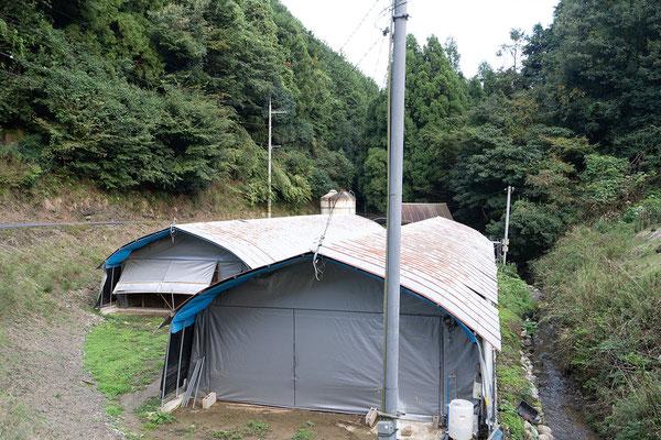 岡本ファームの鶏舎