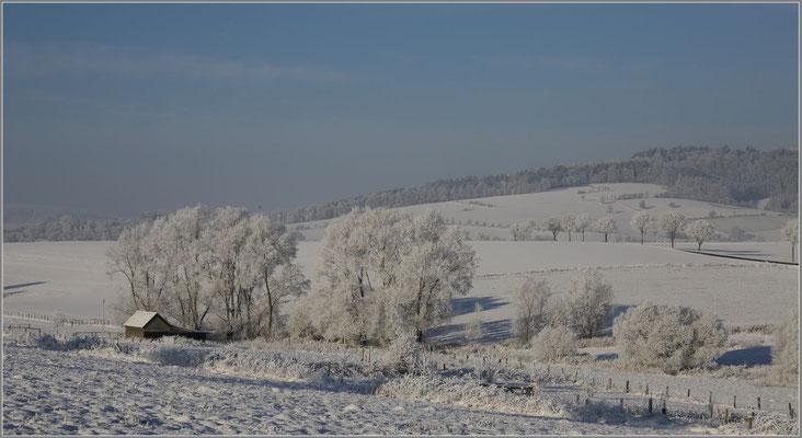 JANUAR 2018 _ Wolfram SCHRÖTER - Der Winter macht sich breit im Solling!