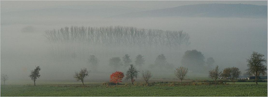 DEZEMBER 2017 _ Wolfram Schröter: Vorfreude auf das neue Jahr - mal schauen, was aus dem Nebel auftauchen wird?!