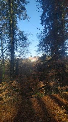 Blick zur Jugendherberge Burg Schwaneck, Pullach