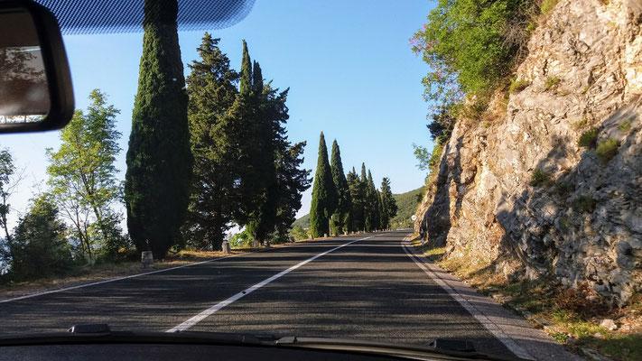 Mit dem Auto geht´s die Küstenstrasse 66 der Ostküste Istriens entlang nach Pula