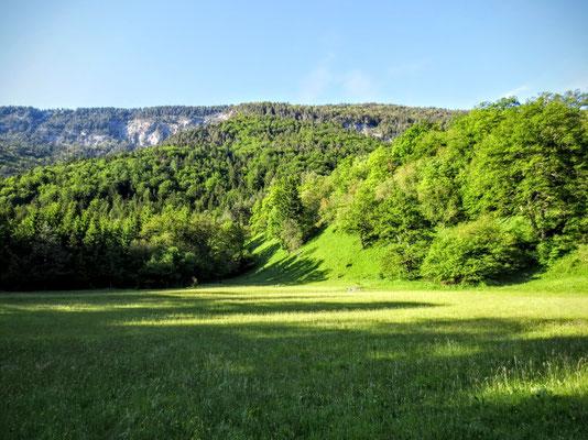 Auf der Weinitzen im Naturpark Dobratsch