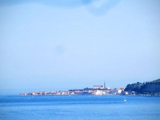 Schöner Blick über die Bucht nach Piran