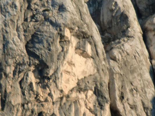Das Felsgesicht in der Prisank-Nordwand