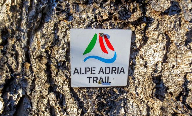 Auch der Alpe-Adria Trail, einer der 10 besten Weitwanderwege der Welt führt durch die Schütt