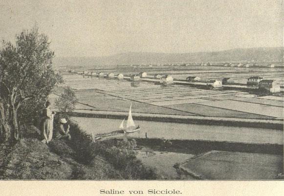 Die Salinen von Secovlje - Sicciole in einer Aufnahme von 1893