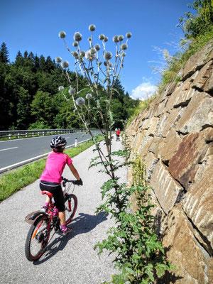 Alpe Adria Radweg bei Arnoldstein
