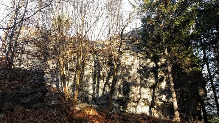 Der angeblich größte Felsbrocken im Bergsturzgebiet des Dobratsch / Schütt