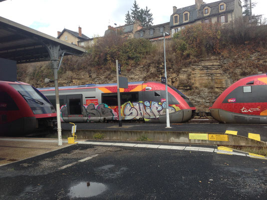 TER en Gare de Mende , Lors d'un GREVE Jeudi 19 octobre 2017
