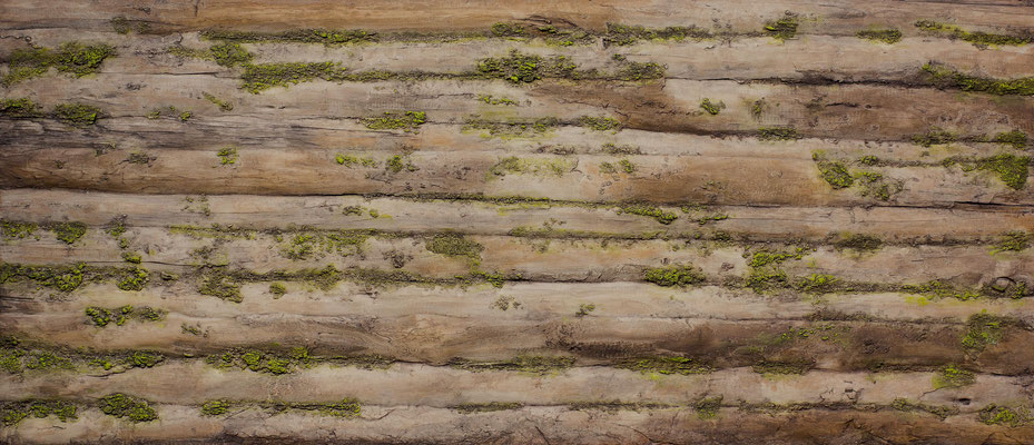 Kunststoff Altholzpaneele mit Moosbeschichtung