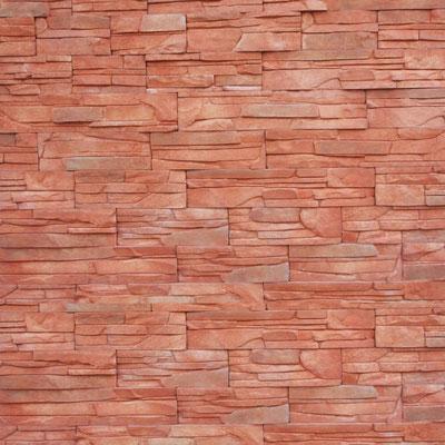 Salamanca duna roja | 006