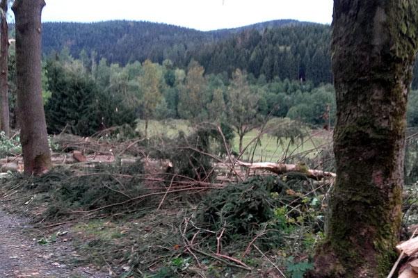 Wünschendorf Ergebirge Sturmtief Fabienne