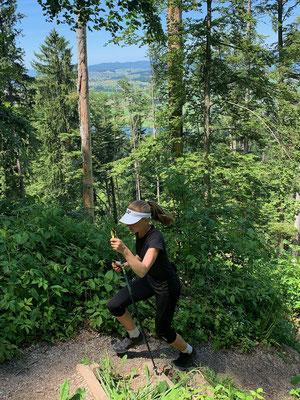Juni 2019: Auf den Rossberg und wieder hinunter