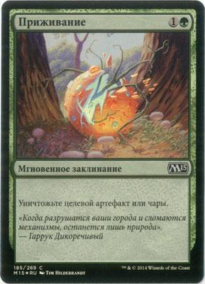 Naturalisation russe M15 foil