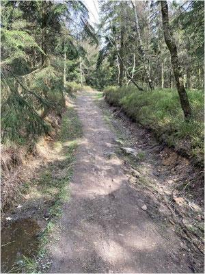 Trail Stück zum Fast