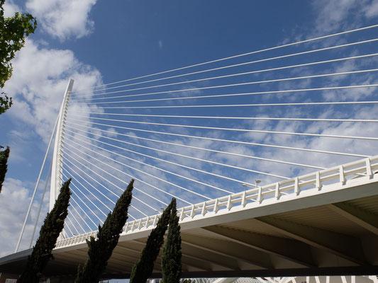 Brücke Calatrava Jamonero