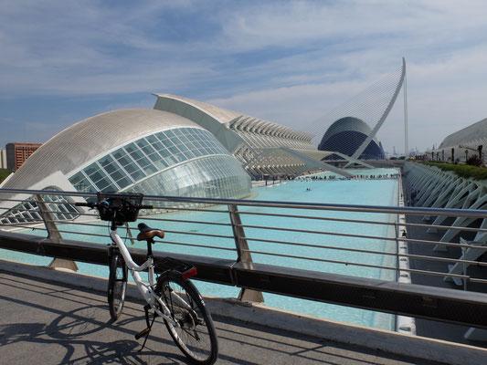 Bike CAC Fahrrad Calatrava
