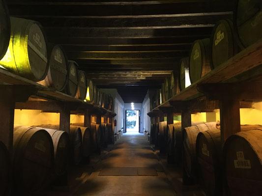 Weinkeller Weinfass Wein Bodega