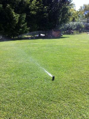 Bewässerungssystem Regner