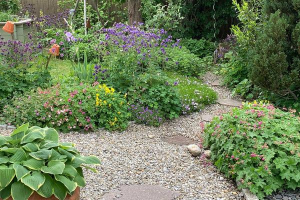 Beispiel naturnaher Garten - Foto: Claudia Thornton