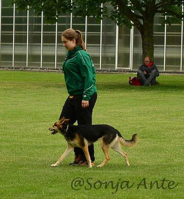 Lena & Kiwi Unterordnung