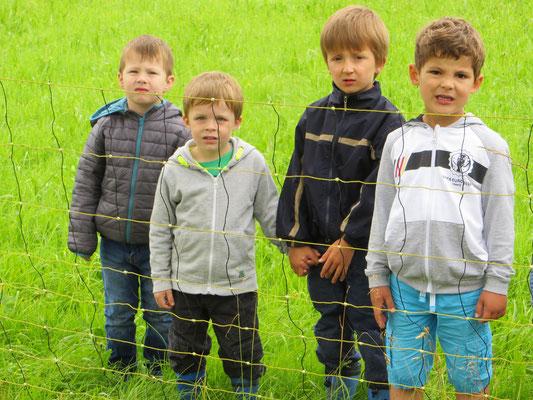 16.06.2016 Die Kinder schauen gebannt zu! - Foto: Friedrich-Karl Menz