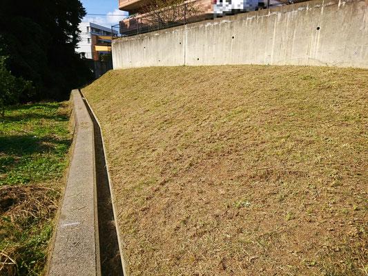 法面 草刈り After