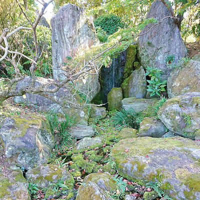 福岡緑化センター 日本庭園
